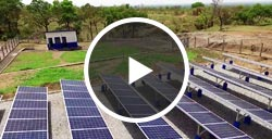 Uganda Solar Water Pumping Projects