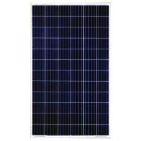 Dayliff 200W Multicrystalline Solar Module 24VDC