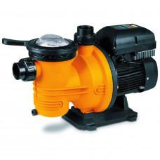 Dayliff DPL1100 1.1kW Pool Pump